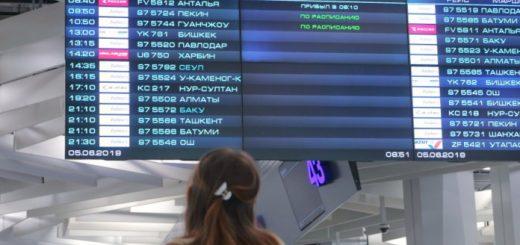 В Толмачёво усилили контроль прибывающих из Китая рейсов