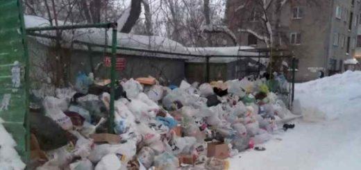 Путин поручил решить вопрос раздельного сбора мусора до лета