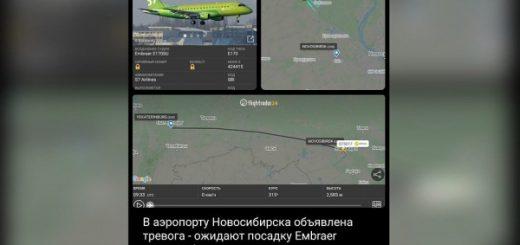В аэропорту «Толмачёво» сел неисправный самолет