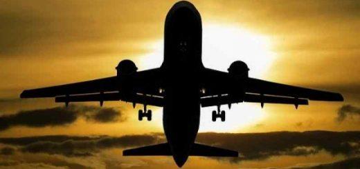 Экстренную посадку совершил самолет в Толмачево