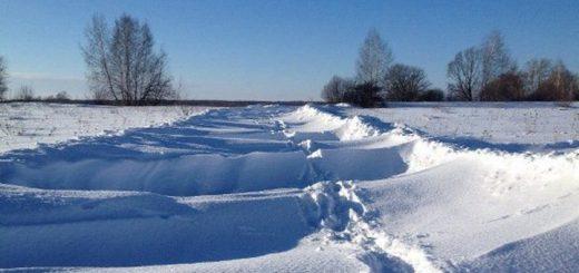 Режим ЧС ввели в трех районах Алтайского края из-за метели