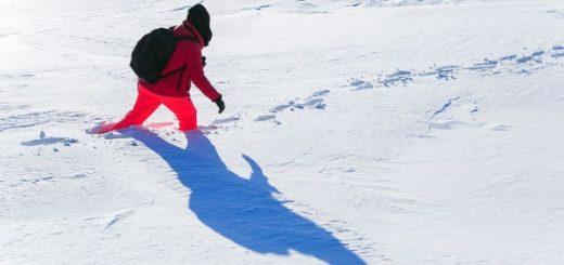 Общественники попросили Путина помочь убрать снег