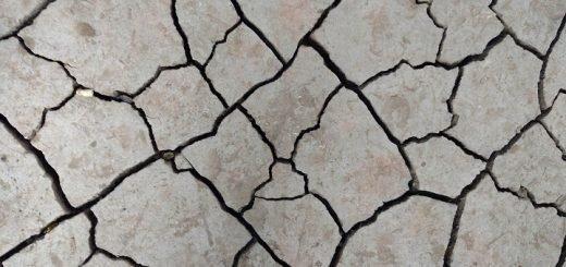 В Алтайском крае произошло землетрясение
