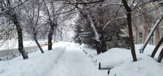 Теплые праздничные дни ждут область: погода на 22-24 февраля