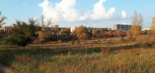 Четверо погибли от отравления газом в Красноярском крае