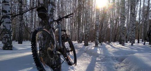 Коноплю «посеял» в снег трусливый велосипедист