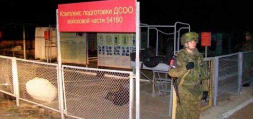 «Пробивали лося» в воинской части Шамсутдинова