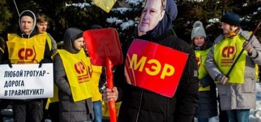 Новосибирские эсеры вручили человеку в маске Анатолия Локтя красную лопату