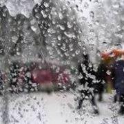 Синоптики: пасмурные тёплые выходные ожидают новосибирцев