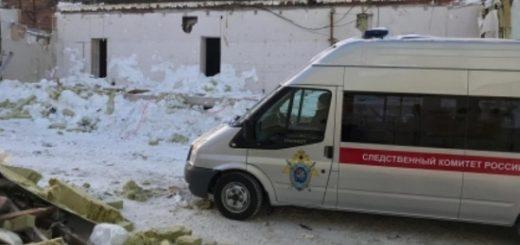 В Новосибирске задержали организатора закончившейся смертью вечеринки в Академгородке