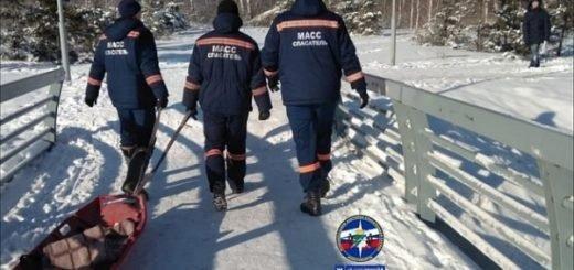 Человек «без признаков жизни» исчез из лесного массива Новосибирска