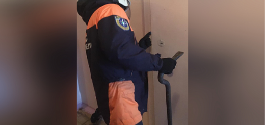 Ребёнок оказался заперт в квартире со злой собакой в Новосибирске