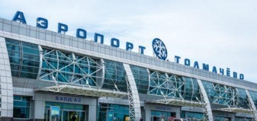 В Толмачево планируют создать центр послепродажного обслуживания самолетов