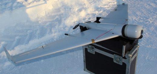 Браконьеров на Алтае ищут с беспилотниками