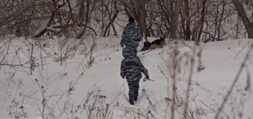 Стали известны новые подробности дела о пропавших на Алтае подростках