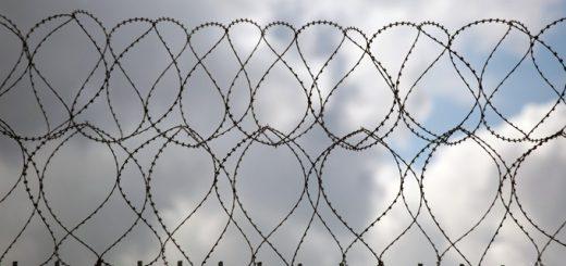 Против тюрьмы на территории Бердска протестуют горожане