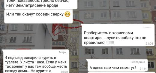 Добро и зло домовых чатов WhatsApp