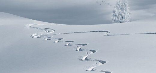 Ученые сообщили, будет ли на Алтае аномальный паводок