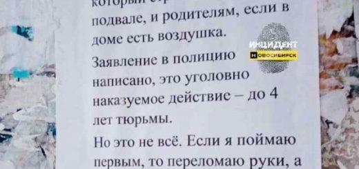«Переломать руки» пригрозил новосибирец юному стрелку по кошкам