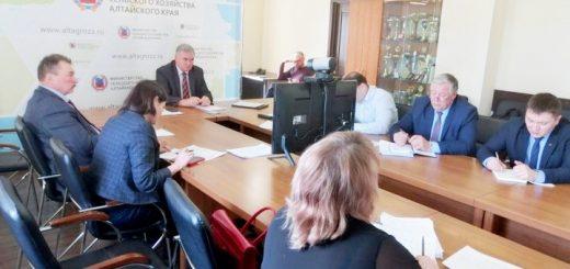 Дмитрию Патрушеву рассказали, как готовятся к посевной в Алтайском крае