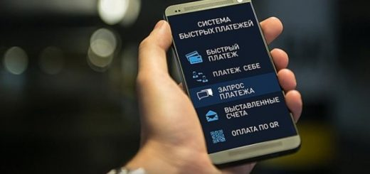 Новосибирск вошел в пятерку лидеров по оплатам интернет-покупок через Систему быстрых платежей