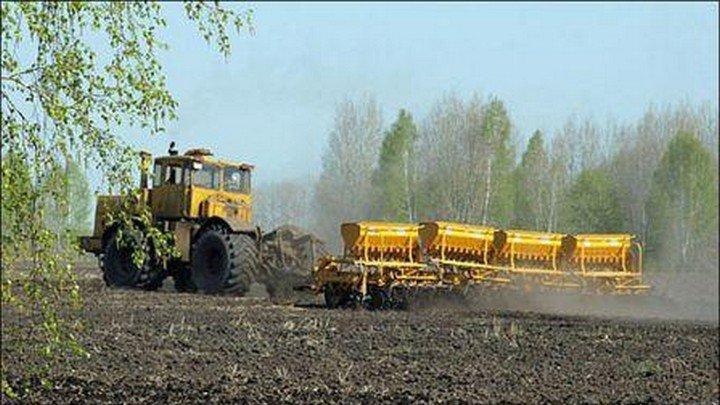 Иван Лоор считает, что ничего не мешает посевной кампании в Алтайском крае