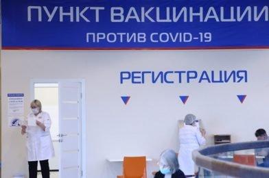 17 уголовных дел о подделке документов по COVID-19 завели в Новосибирской области