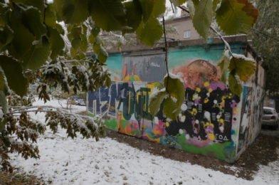 Снег и сильный ветер обещают новосибирцам синоптики